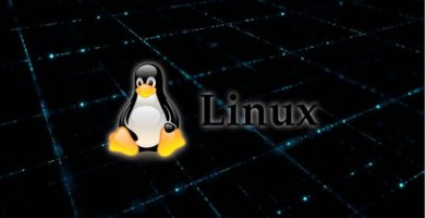 Top SELinux courses of the year