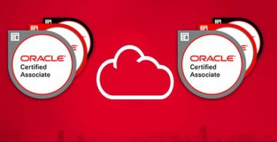 Top Oracle 1Z0-1084-20 courses of the year